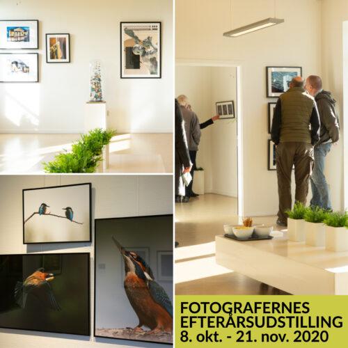 Fotografernes efterårsudstilling - 2020 Copy